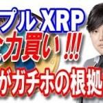 【仮想通貨】なぜ与沢翼はリップル(XRP)を全力買いするのか? ガチホの根拠はこれだ!!!