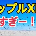 ♡XRP強い♡大幅な相場下落 仮想通貨市場で生き残るために
