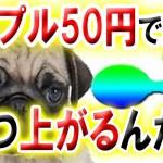 【仮想通貨】ビットコイン休憩!! リップルはそろそろ50円突破する!!