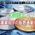 米SEC初、一般投資家向けの仮想通貨ICOが承認された WSJ報道【仮想通貨・暗号資産】