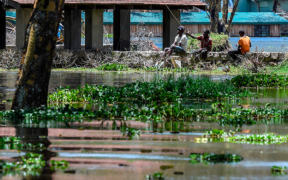 Africa Seeks $25 Billion for Climate Adaptation, Green Recovery