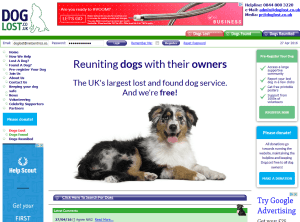 DogLost (portfolio: web design & web development)