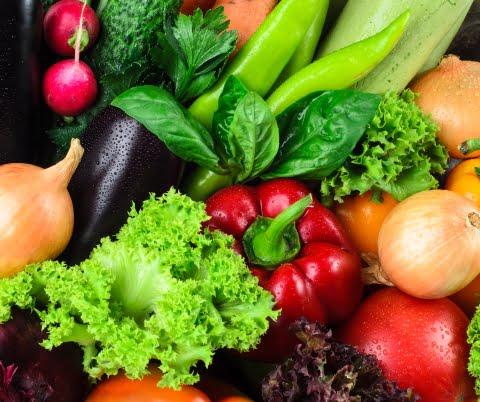 Des salmonelles présentes dans les légumes vendus dans les Niayes et à Dakar (Étude)