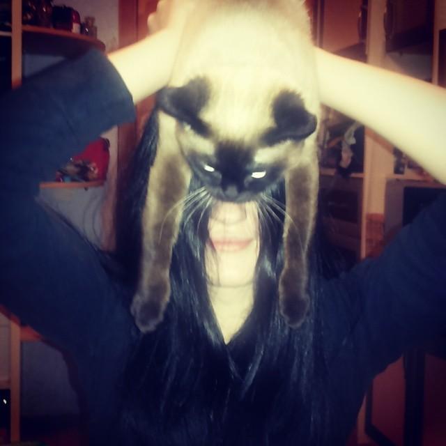 catman_12
