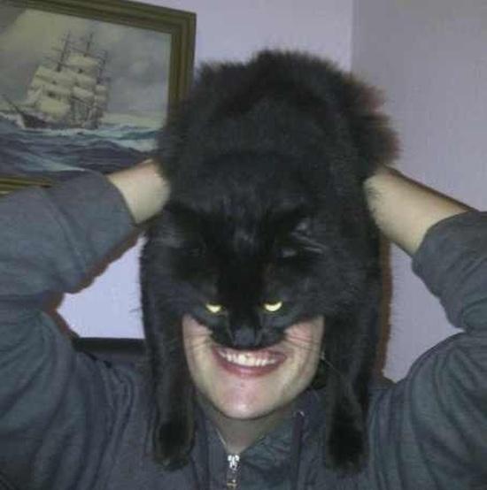catman_19