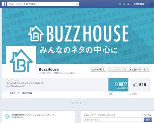 buzzhouse