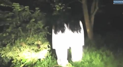ghostrevenge