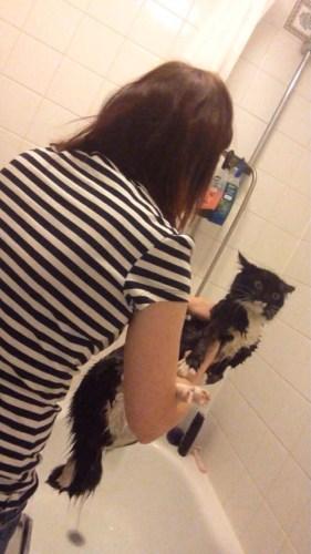 bathcat (11)
