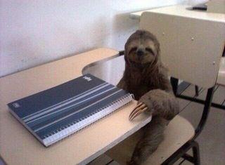 sloth1 (8)