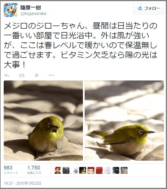mejiro_hogo (4)