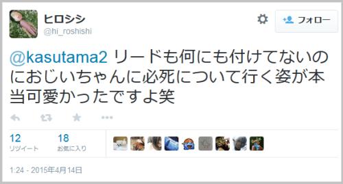 tukisima_kame6