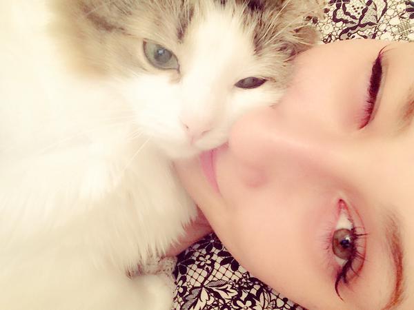 darenogare_cat (3)