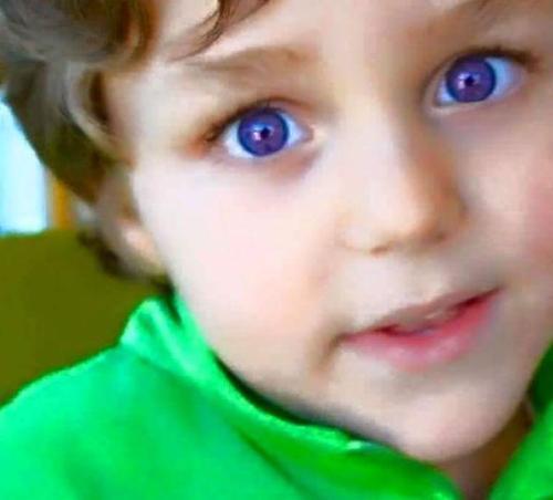 purpleeye (2)