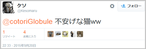 tanuki_cat5