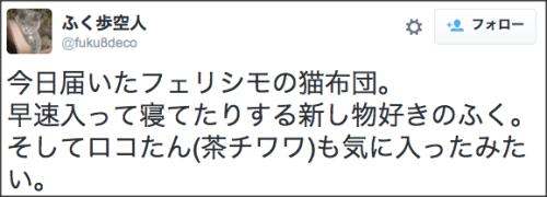 1019nekofukuro3