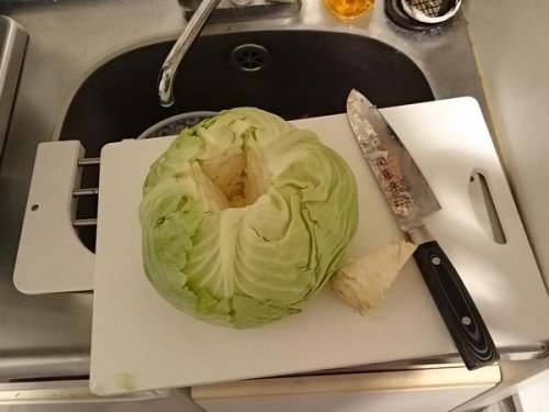 cabbage_suihanki (1)