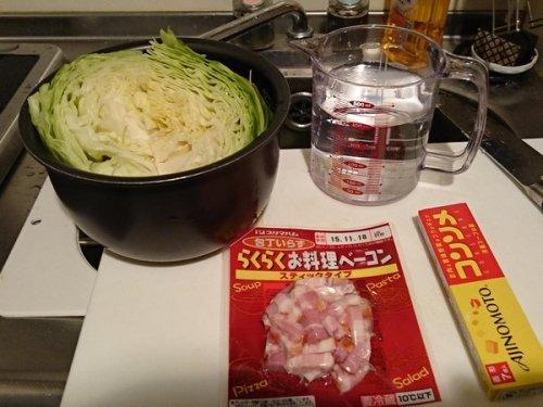 cabbage_suihanki (3)