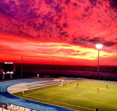 soccer_stedium4