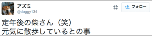 1104suzuki_shiba3