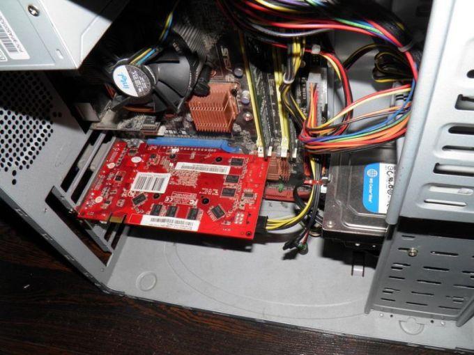griby-vnutri-kompjutera_03