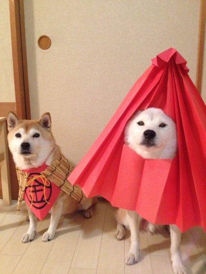1204youkai_dog6