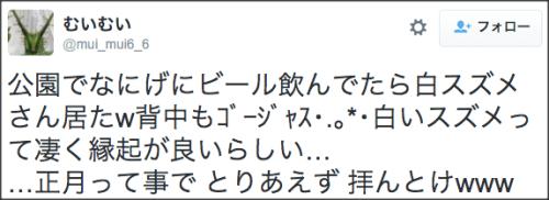0110white_suzume5