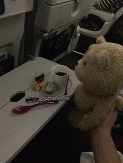 0113ted_trip5