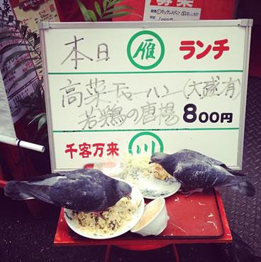 foodsample_iwasaki (1)