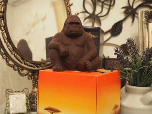 gorillachoko (1)