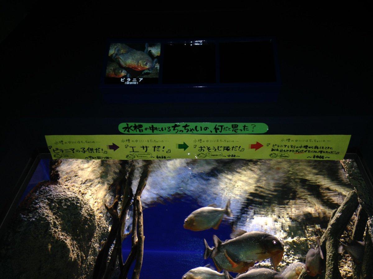 yamanosuizokukan_LINE (3)