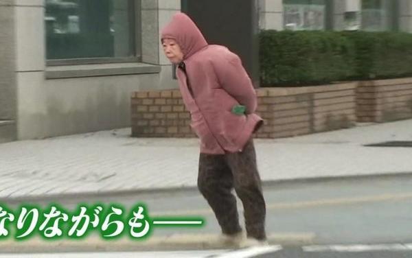 saigai_animal (7)