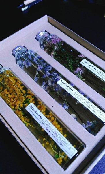 herbarium_hana1