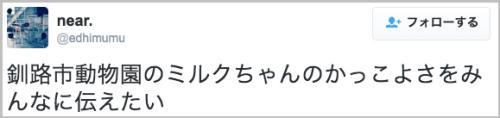 shirokuma_milko6