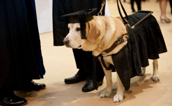 johnshopkins_guidedog1