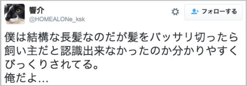 kamibassari_bikkuri1