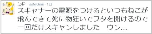 neko_ scanner(9)