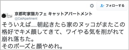 neko_yarukisogu3