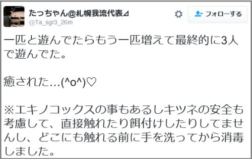 tweet_kitsune (2)