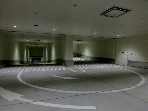 tukiji_toyosu (6)