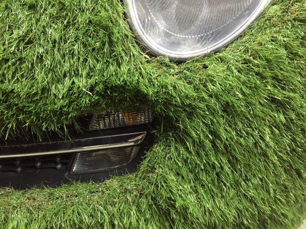 grasscar-11
