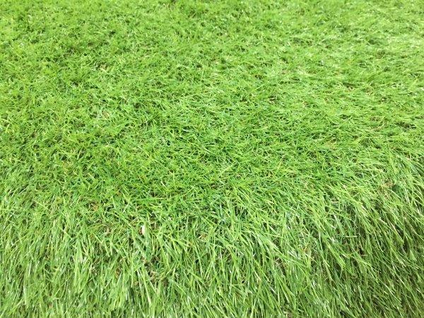 grasscar-12