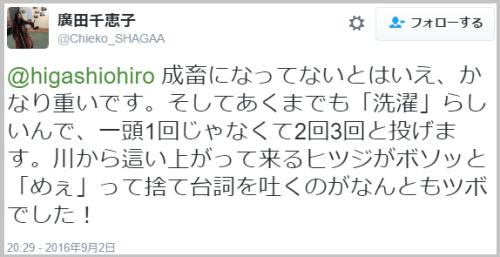hitsujiwash (1)