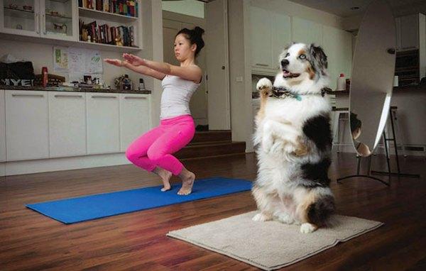 yoga_animal (7)