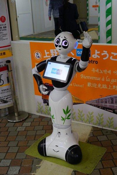pandapepper-3