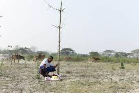 Jadav Payeng in Hindi2