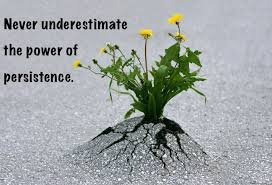 New Quotes on Persistence