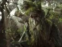 देखिये पहले चलते फिरते पेड़ – क्या यह एन्ट्स की शुरुआत हैं ?