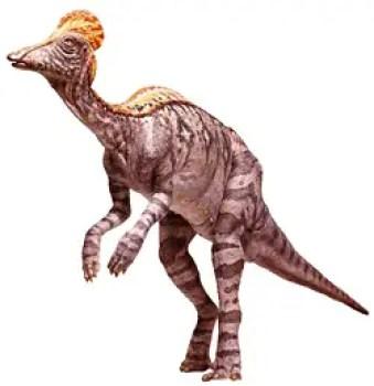 Dinosaur habitat hindi, essay on dinosaur habitat hindi, dinosaur ka aavas