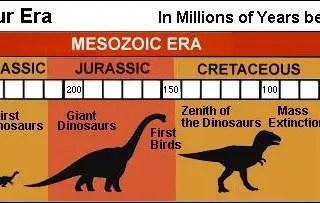 Dinosaur time line, dinosaur kaal, dinosaur yug, dinosaur era hindi, life of dinosaur, end of dinosaurs, beginning of dinosaurs