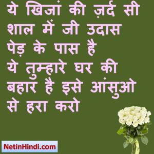 Bahaar status in hindi fb, best hindi shayari on Bahaar, new hindi shayari on Bahaar, 2 line hindi shayari on Bahaar ये खिजां की ज़र्द सी शाल में जी उदास पेड़ के पास है  ये तुम्हारे घर की बहार है इसे आंसुओ से हरा करो